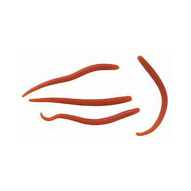 Earthworms Vídeo stock - Shutterstock