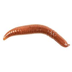 Gulp!® Pinched Crawler