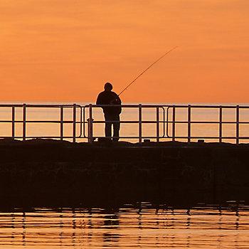 Pier Fishing Solution